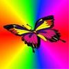 Webbutterfly